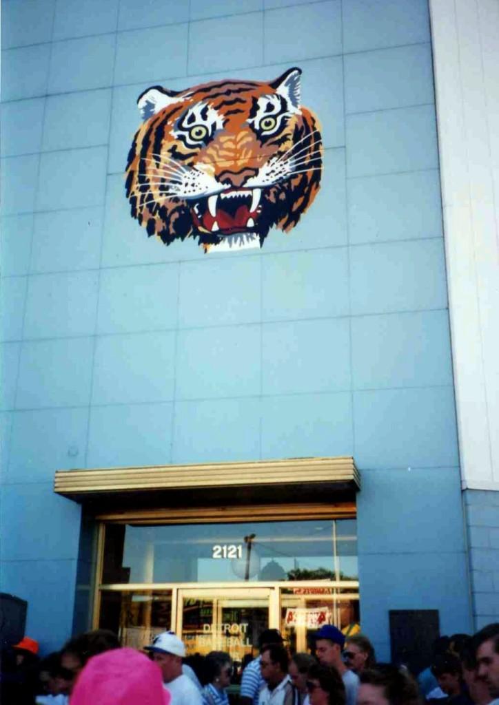 tiger6558c